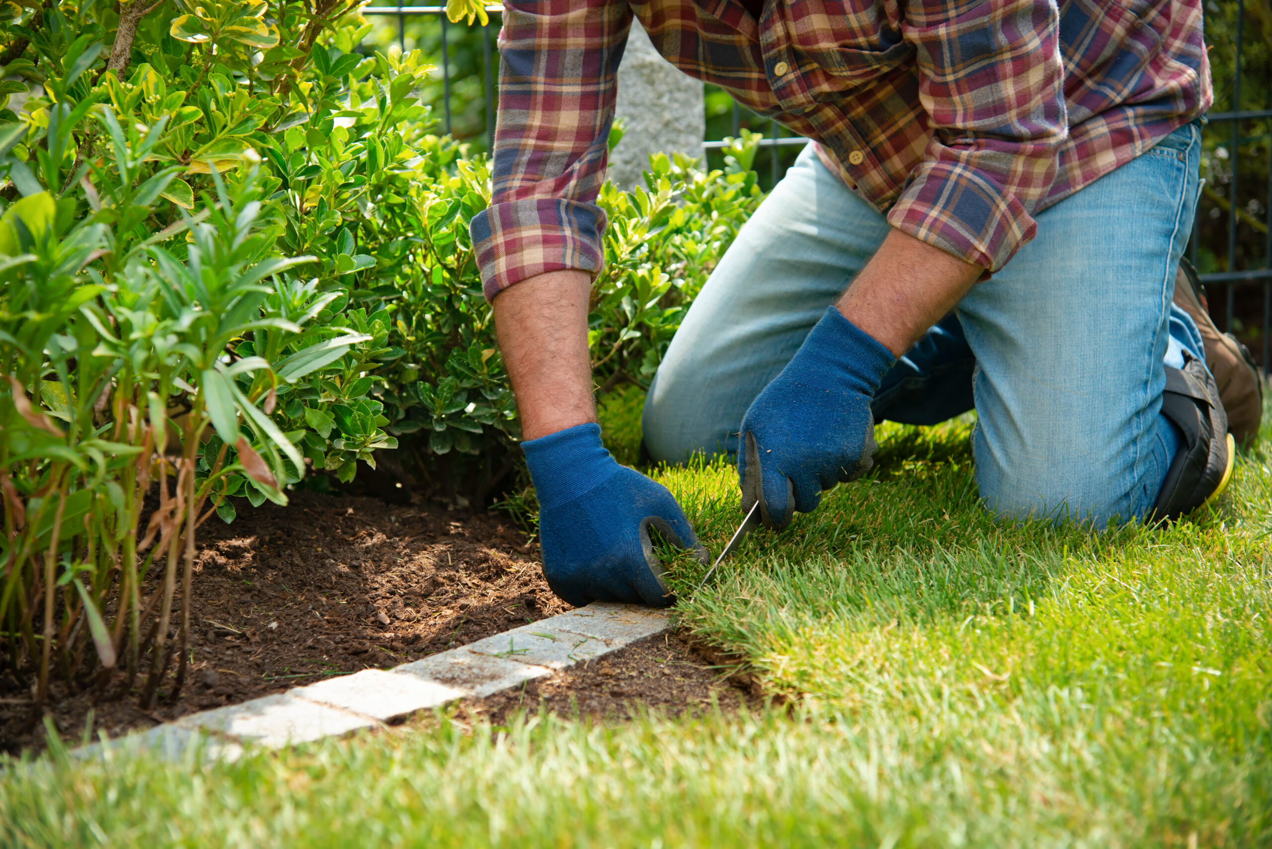 How to Grow Visitors for a Landscaping Services Blog